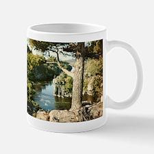 Funny St croix Mug