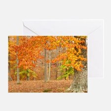 Approaching Fall Greeting Card