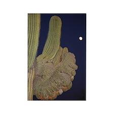 Saguaro Cactus 2 Rectangle Magnet