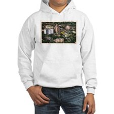 Rochester Aerial View Hoodie