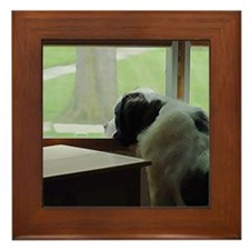 St. Bernard Waiting Framed Tile
