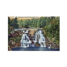 Gooseberry Falls Rectangle Magnet