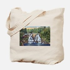 Gooseberry Falls Tote Bag