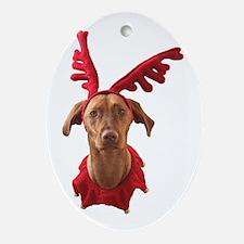Christmas Goodies! Oval Ornament