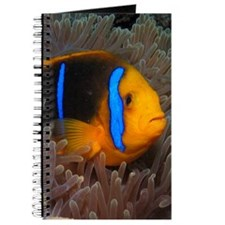 Cute Clown Fish Journal