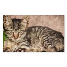 stripes the cat Rectangle Decal