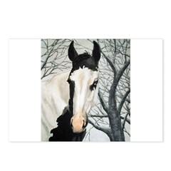 Whats Black & White & Rode all over Postcards (Pac