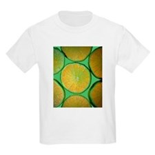 Lime Slices Kids T-Shirt