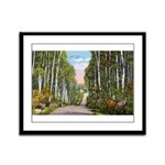 Echo Trail Framed Panel Print