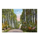 Echo Trail Postcards (Package of 8)