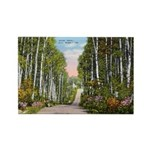 Echo Trail Rectangle Magnet (100 pack)