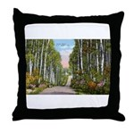 Echo Trail Throw Pillow