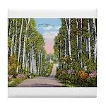Echo Trail Tile Coaster