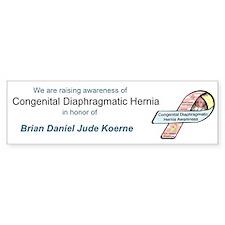 Brian Daniel Jude Koener CDH Awareness Ribbon Stic
