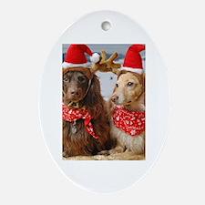 Reindeers Oval Ornament