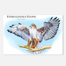 Ferruginous Hawk Postcards (Package of 8)