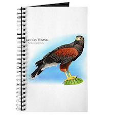 Harris Hawk Journal
