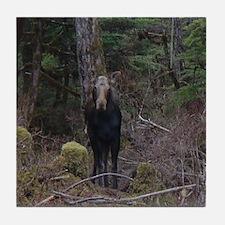 Alaska Wildlife Tile Coaster