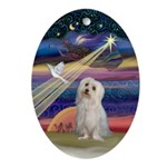 Maltese & Christmas Star Oval Ornament