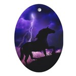 Into the Storm Oval Ornament