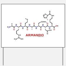 Armando name molecule Yard Sign