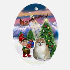 Pom watching Santa take off Oval Ornament