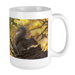Autumn Squirrel Mug