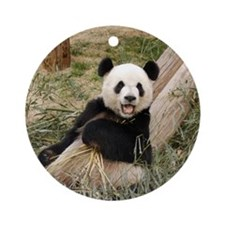 Panda M001 Ornament (Round)