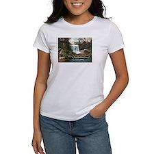 1906 Minnehaha Falls Tee