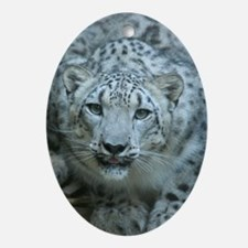 Snow Leopard M005 Oval Ornament
