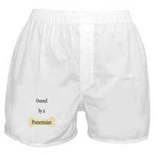 Owned by a Pomeranian Boxer Shorts