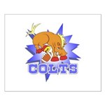Colts Football Small Poster