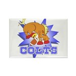 Colts Football Rectangle Magnet (100 pack)