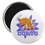 Colts Football Magnet