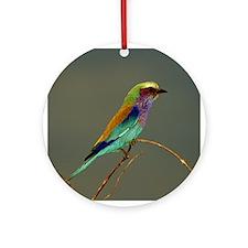 BEAUTIFUL BIRD - Ornament (Round)