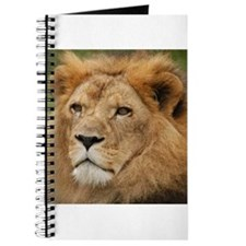 African Lion Journal