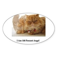 100% Angel Oval Decal