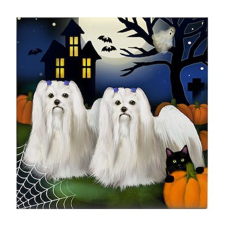 MALTESE DOGS HALLOWEEN Tile Coaster