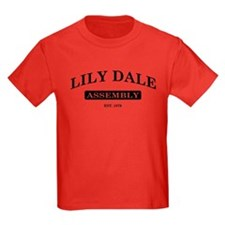 Lily Dale Assembly T