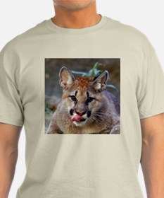 Cougar Cub Ash Grey T-Shirt