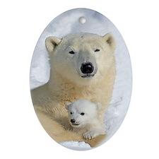 Polar Bear with Cub Oval Ornament