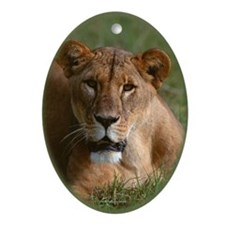 Wild Cat Oval Ornament