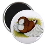 Bokhara Trumpeter Pigeon Magnet