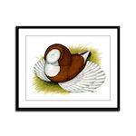 Bokhara Trumpeter Pigeon Framed Panel Print