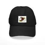 Bokhara Trumpeter Pigeon Black Cap