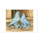 Lavender West Pigeons Postcards (Package of 8)