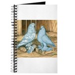 Lavender West Pigeons Journal