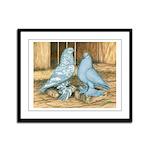 Lavender West Pigeons Framed Panel Print