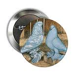 Lavender West Pigeons 2.25