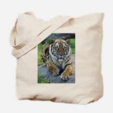 Tiger 4 Tote Bag